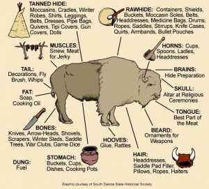 Uses of the Buffalo